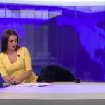 Kutya zavarta meg az orosz híradó élő adását