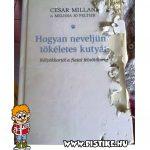 Hasznos könyv