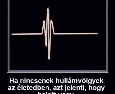 pénisz hullámvölgyek)